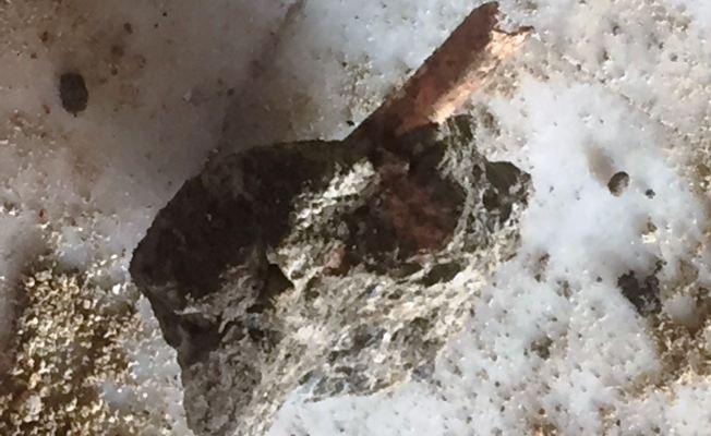Feriköy'de kazı sırasında kemik parçaları bulundu