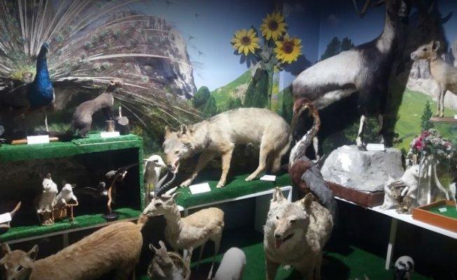 Doğa ve Bilim Müzesi