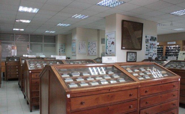 İstanbul Üniversitesi Jeoloji Müzesi