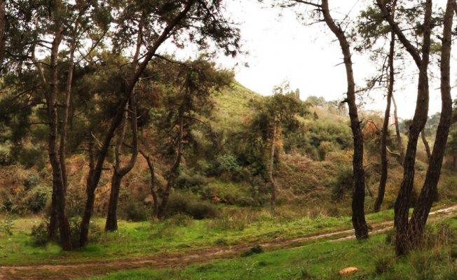 Hacetderesi Tabiat Parkı