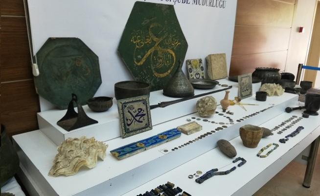 İstanbul'da 12 bin yıllık fosil bulundu