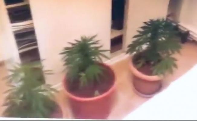 Adalar'da uyuşturucu operasyonu