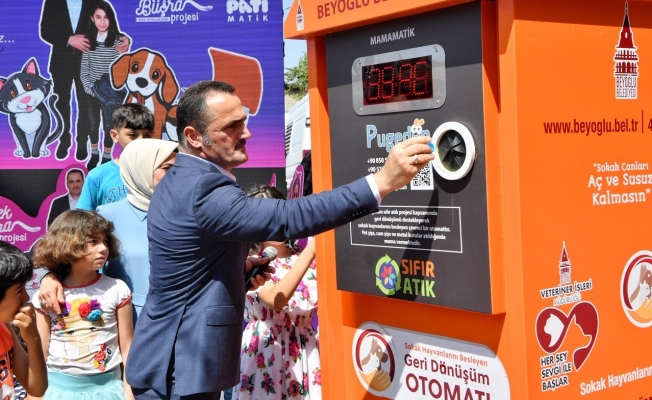 Melek Büşra Sokak Hayvanları Mama Projesi