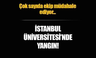 İstanbul Üniversitesi'ndeyangın!