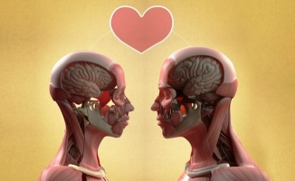 Gerçekte aşk nedir?