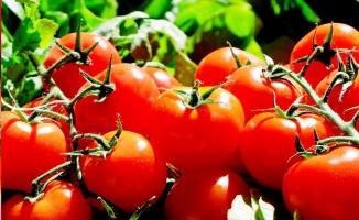 Pişmiş domates ve kabak çekirdeğinin inanılmaz faydaları