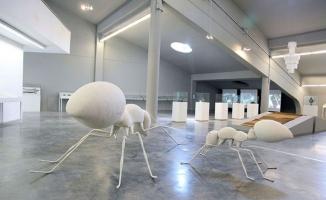 Anadoluda sıradışı bir Müze, Baksı Müzesi