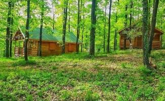 İstanbul'daki cennet: Avcıkoru Tabiat Parkı