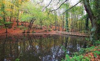 Belgrad Ormanının incisi: Bentler Tabiat Parkı