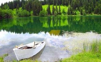 Kızılçam, Erguvan, Çitlembik ve dahası: Büyükada Tabiat Parkı