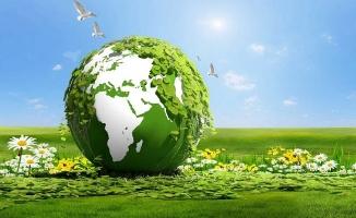 Ataşehir Belediyesi Çevre Veterinerlik ve Yol Hizmetleri