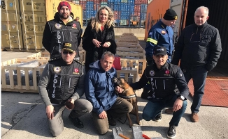 İstanbul polisinden Yunanistan'da dev operasyon