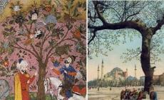 Meyvesi İnsan Olan Ağaç: Çınar Vak'ası (Vaka-i Vakvakiye)