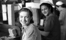 Fabrika Kızı şarkısının  hikayesi : Cibali Tütün Fabrikası