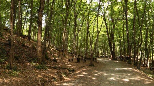 Irmak Tabiat Parkı