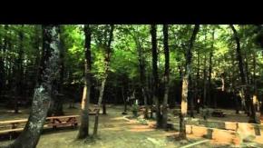 Fatih Çeşmesi Tabiat Parkı