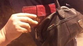 Fransız turistin çantasını böyle çalmışlar